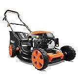 FUXTEC Benzin Rasenmäher FX-RM4646ECO getestet mit Note 1,4 in der HeimwerkerPraxis Motor mit Easy Clean 3in1 Motormäher Schnittbreite 46cm-50L Grasfangkorb