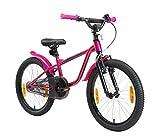 LÖWENRAD Kinderfahrrad für Jungen und Mädchen ab 6 Jahre   20 Zoll Kinderrad mit Bremse   Fahrrad für Kinder   Berry