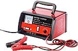 Lescars Auto Ladegerät: Profi-Batterieladegerät für 6 V / 12 V, max. 6 A (Ladegerät für Autobatterie)