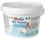 Pastaclean WC-Pulver Pinie Aktiv Plus 2,5kg