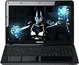 Medion Erazer X6815 39,6 cm (15,6 Zoll) Laptop (Intel Core i7 2670QM, 2,2GHz, 4GB RAM, 500GB HDD, DVD, Blu-ray, Full HD, Win 7 HP) schwarz
