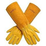 Gartenhandschuhe Damen Herren - Acdyion Rindsleder Gartenhandschuhe mit langem Unterarmschutz, Beschneiden oder Behandeln von Dornenzweigen für Kaktus Rose usw (Medium, Gelb)