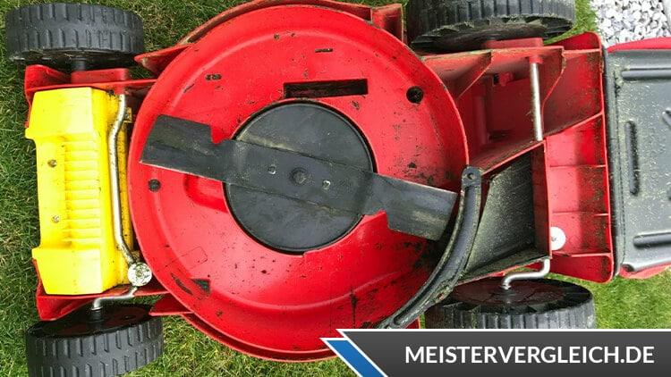 WOLF Garten Elektro Mulchmäher A 370 E Praxistest