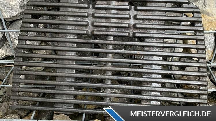 Weber Q2200 Gussrost
