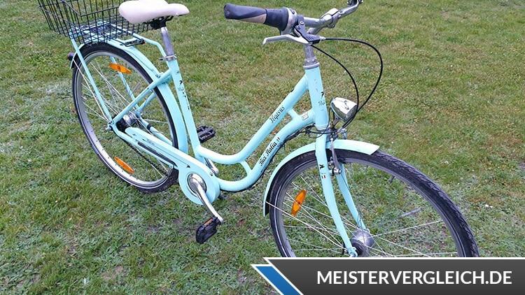 Pegasus Bici Italia