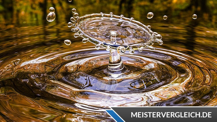 Wasser für die Gänse