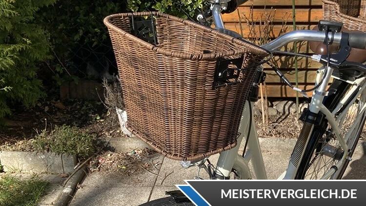 FISCHER Retro E-Bike ER 1804 Korb vorne