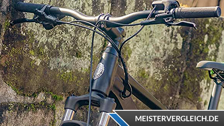 Allegro E-Bike MTB Young Hardtail 400 Lenkrad